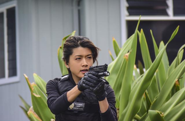 Watch Hawaii Five-0 episode 19