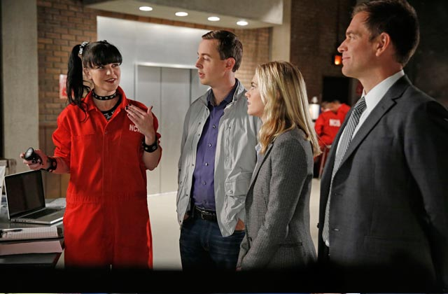 Meet the cast of NCIS