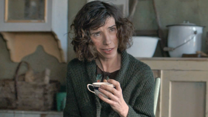 Exclusive Ethan Hawke And Sally Hawkins In Maudie